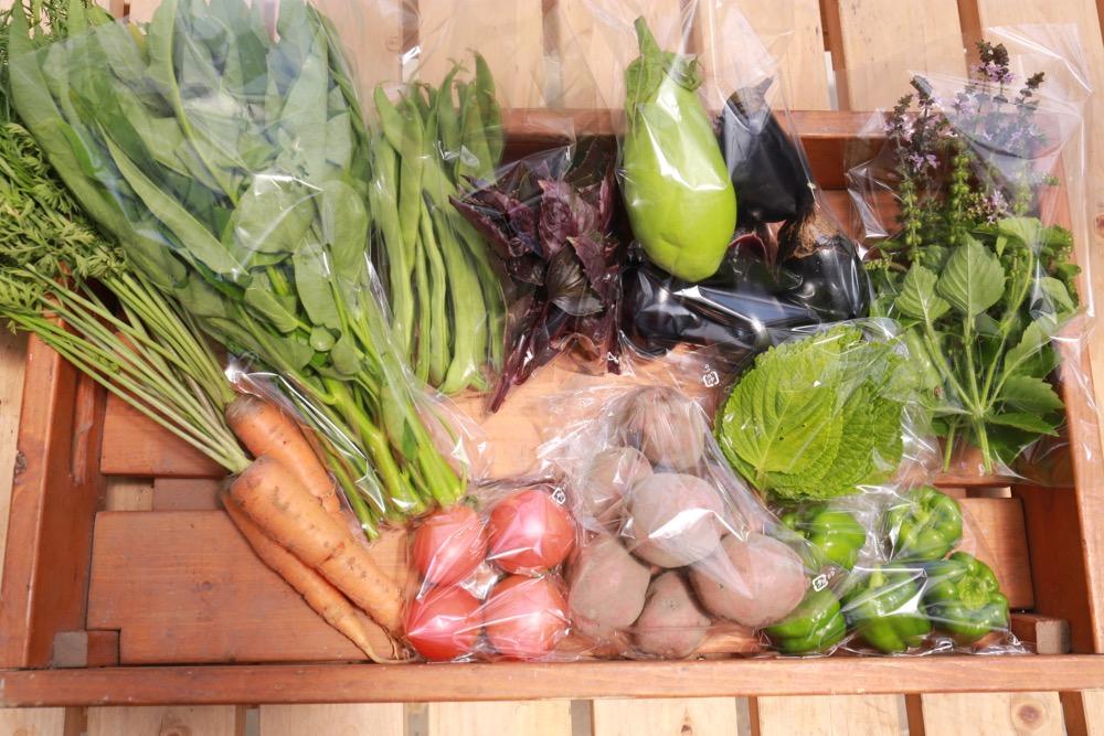 7月3週目のお野菜BOX
