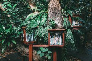 【16日間、高純度発信プロジェクト12】森の図書館構想